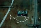 K Fish 1